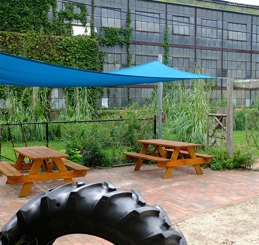 Two picnic tables with a blue tarp overhead covering with plants and grass in the background in Our Backyard at LICM.