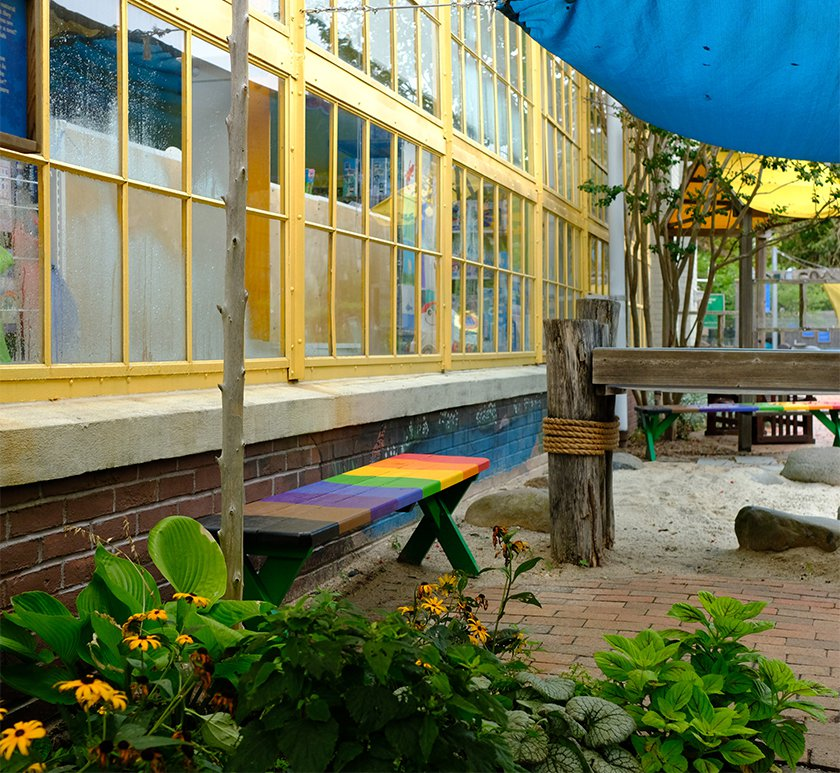 A rainbow bench under windows of LICM in Our Backyard exhibit.
