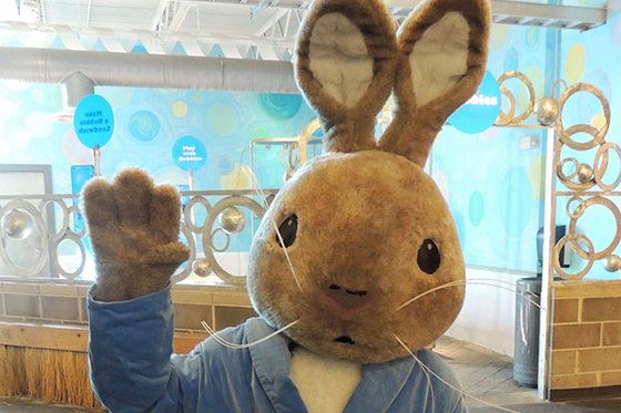 Character in costume of Peter Cottontail.