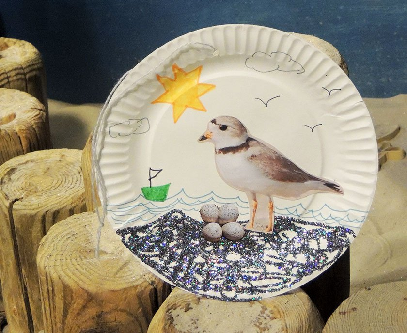 Paper plate craft featuring a piping plover and glitter.