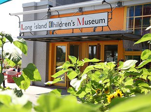 The East entrance of the Long Island Children's Museum with sunflowers and leaves in the foreground.